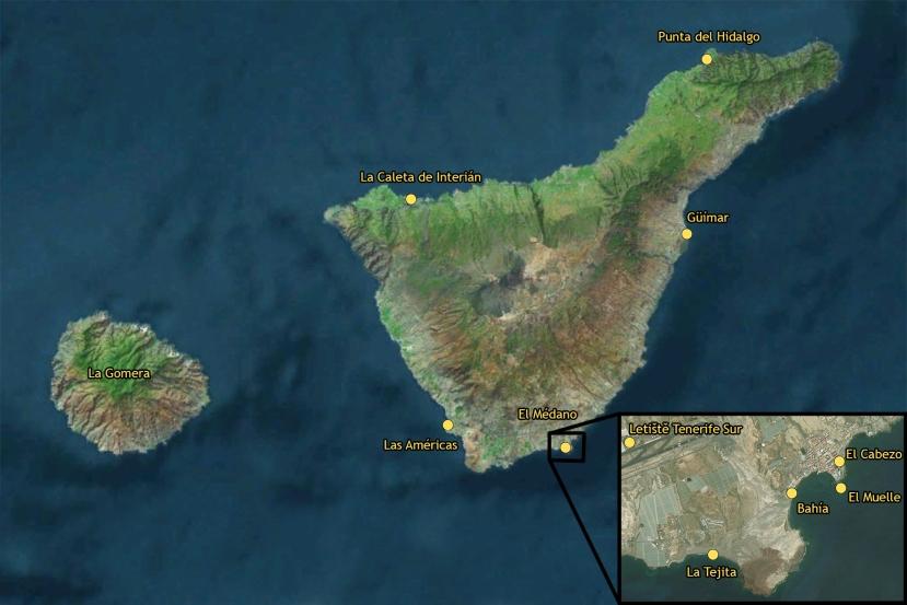 Tenerife windsurf and kiteguide