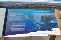 informační cedule o velrybách mezi Tenerife a Gomerou