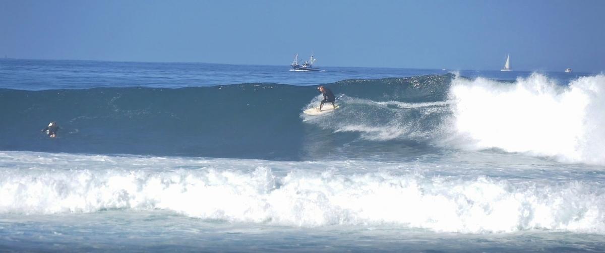 Zima ve znamení surfingu